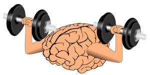 脳で血糖を消費する図